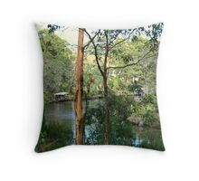 Peace on the Inlet Throw Pillow