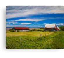 Old Barns at Burnthead Cove, Nova Scotia Canvas Print