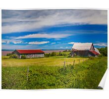 Old Barns at Burnthead Cove, Nova Scotia Poster