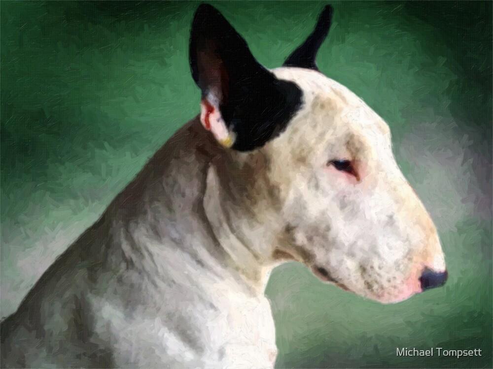 Bull Terrier on Green by Michael Tompsett