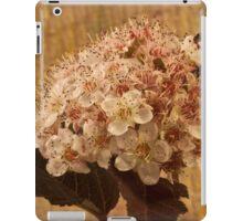 Bronze Leafed Spirea Blossom Macro  iPad Case/Skin