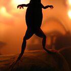 My Frog Crispin by Sherry Lynn Crawford
