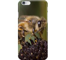 Close up Bee iPhone Case/Skin