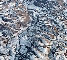 Canadian Tundra Artwork by Kasia-D