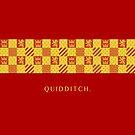 Gryffindor Quidditch.  by WarnerStudio