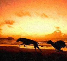 Greyhounds on Beach at Sunset by Michael Tompsett