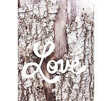 love 1 Photographic Print
