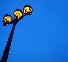 I just love Paris lights by Nicole Barnes
