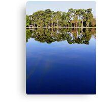 Lake view - sky mirror Canvas Print