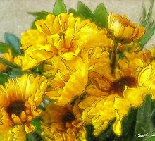Yellow Chrysanthemums 3 by Christopher Johnson
