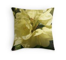 Yellow Rhododendron Flower  Throw Pillow