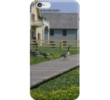 Geese iPhone Case/Skin