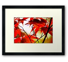 Spring Watercolours Framed Print