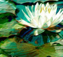 White Water Lily Impression Sticker
