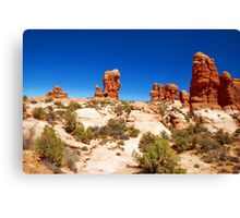 SW Color Canvas Print