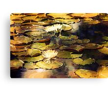 Gilded Lilies Canvas Print