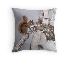 Red Squirrel on Birch Tree Throw Pillow