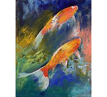 Two Koi Fish Photographic Print