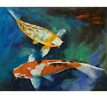 Sanke Koi Painting Photographic Print
