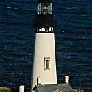 Yaquina Head Lighthouse by Laddie Halupa