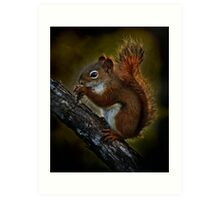 Red Squirrel - Photoshop Manipulation Art Print