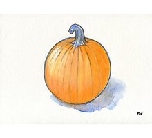 Pumpkin Study Photographic Print