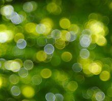 Under the Tree by Kasia Nowak