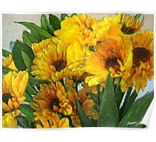 Yellow Chrysanthemums 4 Poster