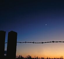 Fence and Farmland - Minnesota by Kent DuFault