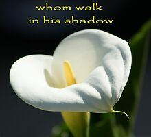Blessed are those whom walk in his shadow; Lei Hedger Photography, La Mirada, CA USA (1362 views 4/1/13) by leih2008