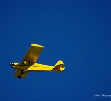 Just Plane  by DavesPhoto