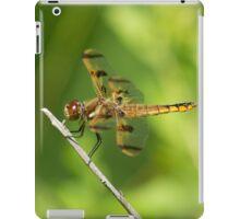 Enter The Dragon iPad Case/Skin