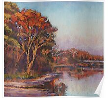 Early morning, Lake Cathie Poster