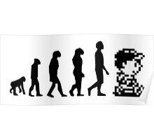 Evolution-ness Poster