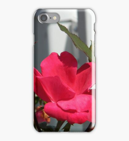 Roses Against the Fence  ^ iPhone Case/Skin