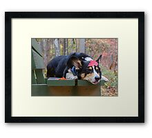 Featherweight Knockout Framed Print