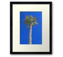 Icons of the Beach Framed Print