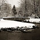 Stone Bridge and Snow by ericseyes