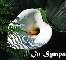 In Sympathy by Julia Harwood