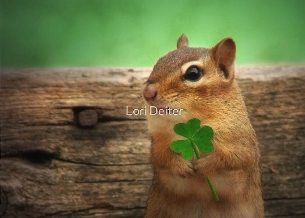 Irish Chippy by Lori Deiter