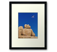 I Wish I Could Fly. Framed Print