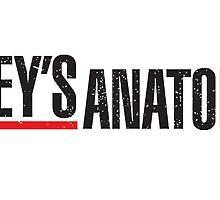 Grey's Anatomy Logo by sonicsandwands
