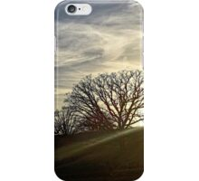 EVENING DIFFUSE iPhone Case/Skin