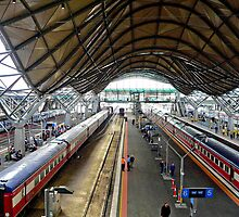 Southern Cross Station IV by Tom Newman