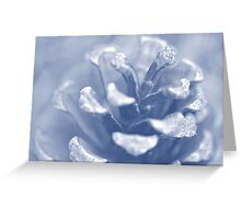 Winter Pine Cone (Blue Filter) Greeting Card