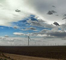 West Texas Wind Farm by Susan Russell