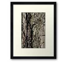 Cortex in Natural Framed Print