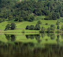 Rydal Water in August by Jamie  Green