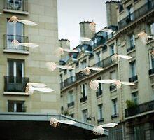 flying fishes by Tai Chau