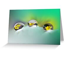 Pansy reflections Greeting Card